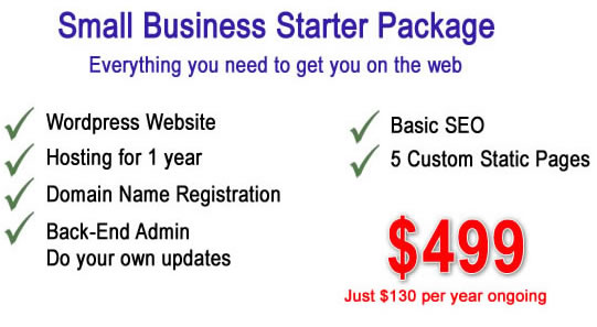 Website Design Starter Package by Dynamic Dolphin Designs